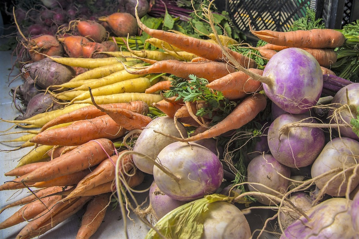 Raw vegetables and fruits need to be washed well to prevent a bacterial infection.
