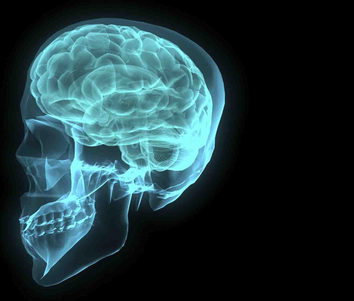 A parasite in the brain can have serious effects.