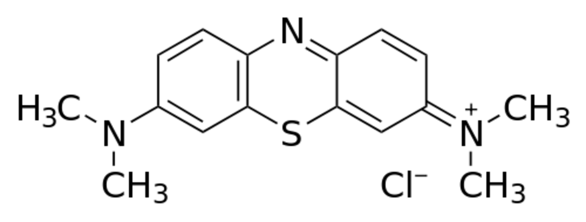 Structure of a methylene blue ion