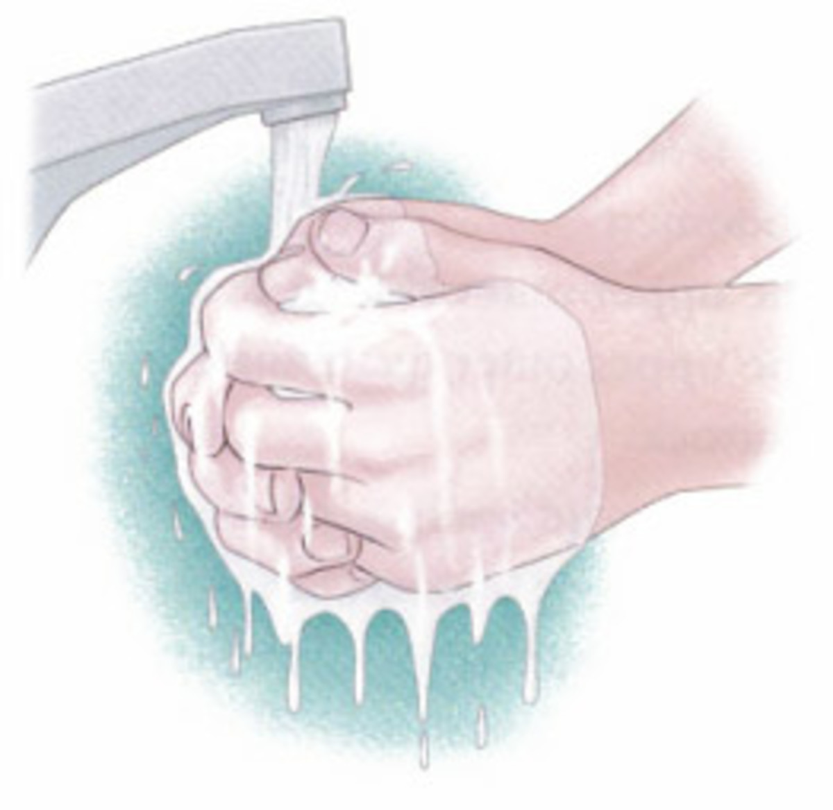 Wash hands with disinfectants