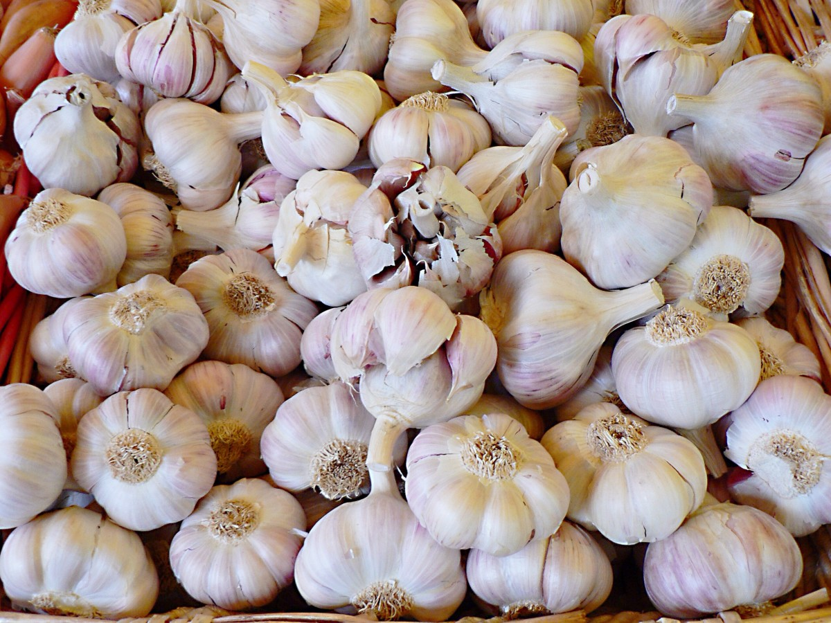 Garlic is another very healthy food that causes acid reflux in some people.
