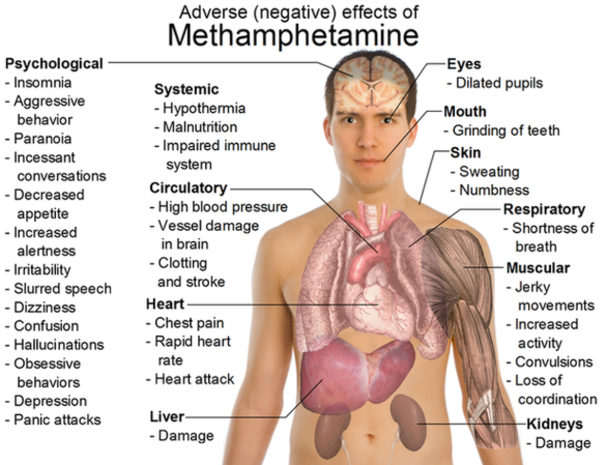 Adverse effects of Methamphetamine