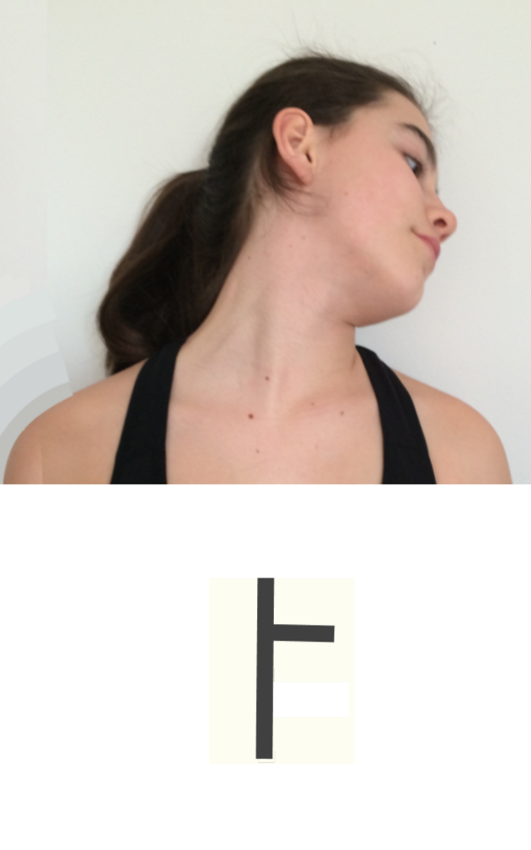 Turn the head to the right and drop the  right ear towards the back.