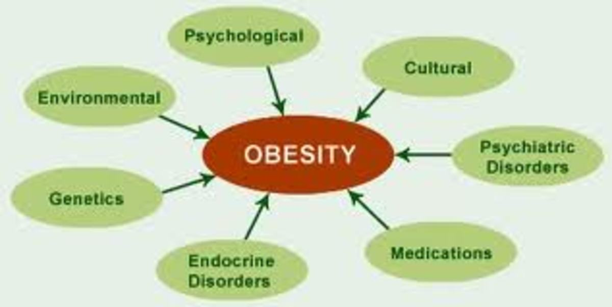 causes and solutions to the obesity epidemic According to the centers for disease control and prevention, one third of all  adults and 17 percent of all children in the united states are obese.