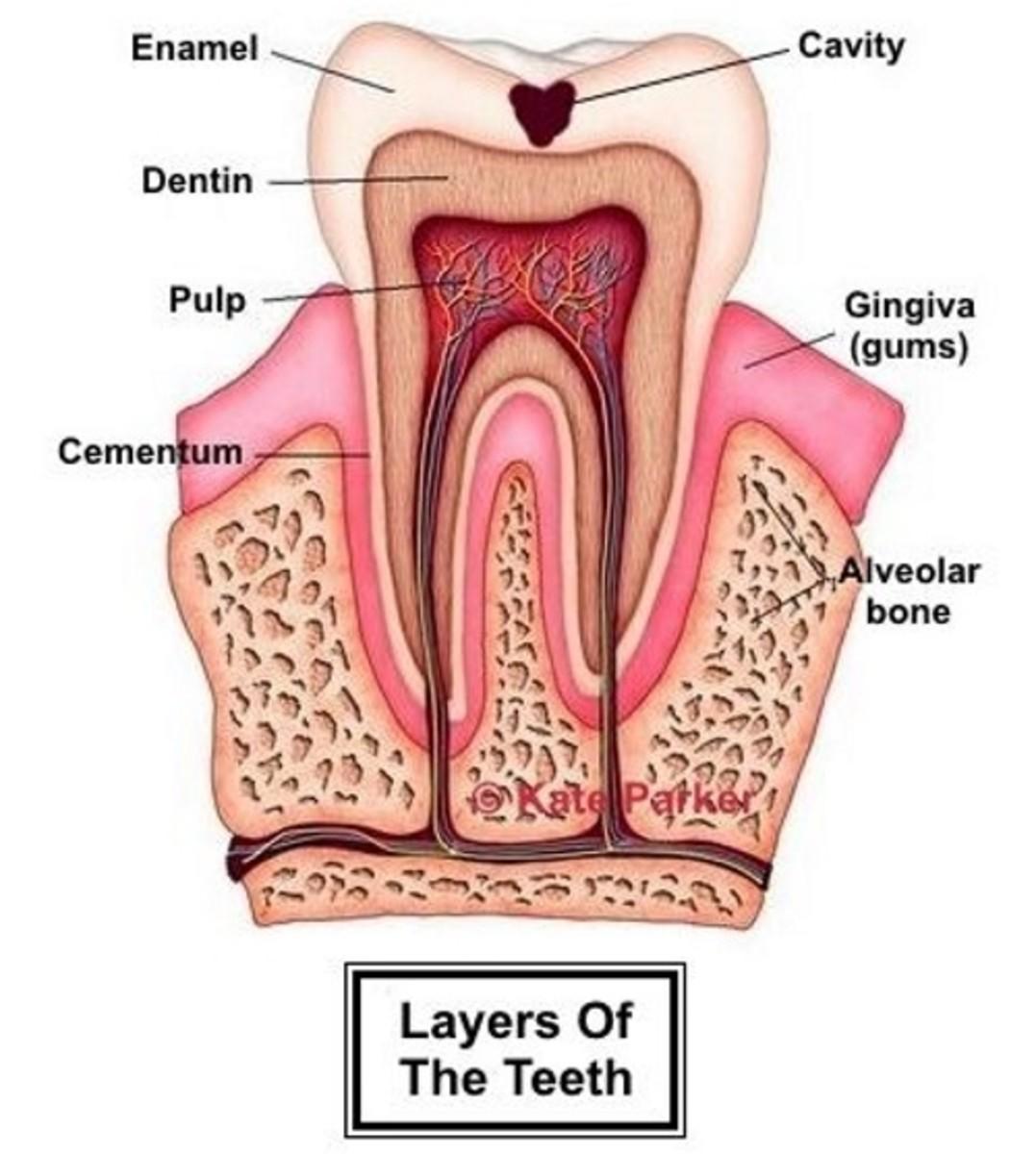 cure-cavities