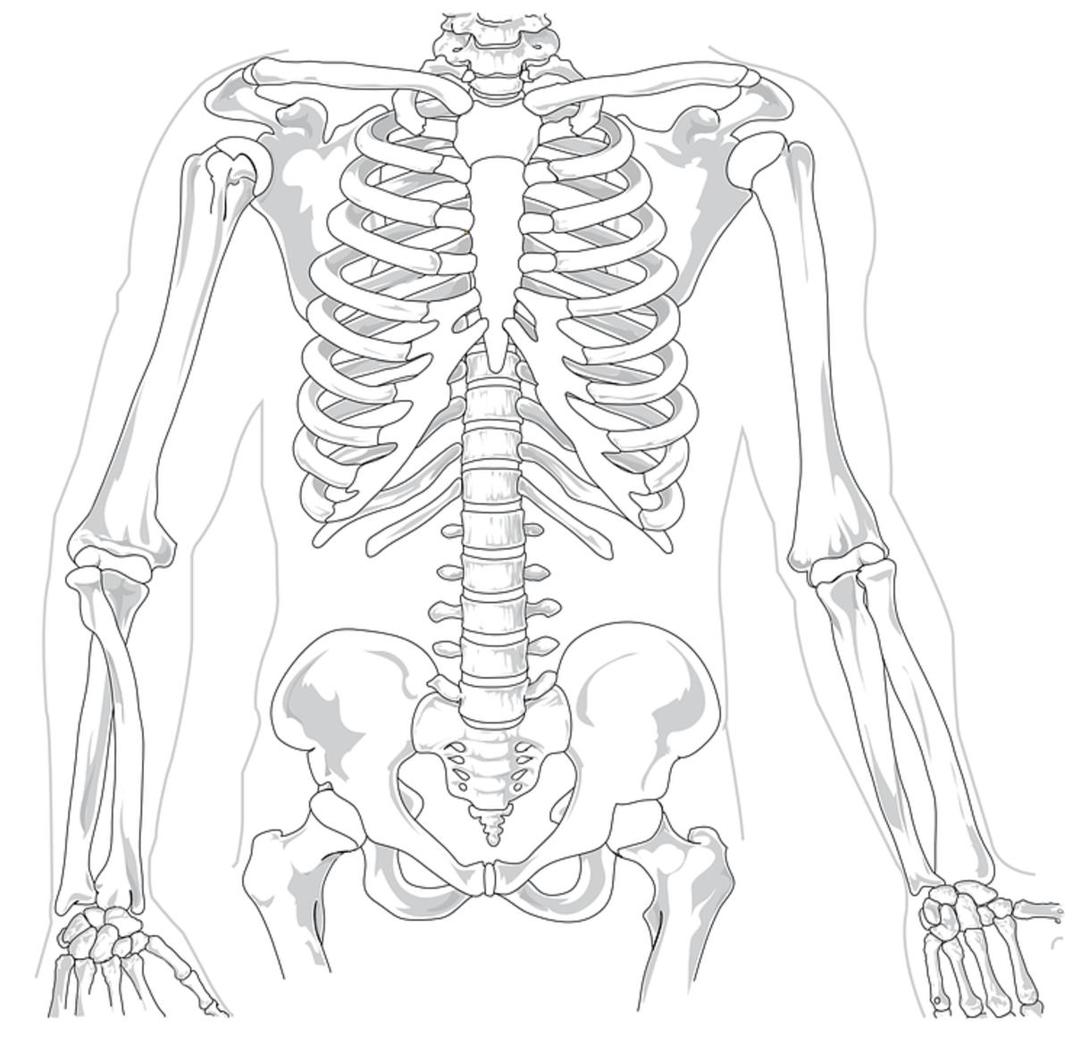Sacroiliac Joint Dysfunction, Iliac Apophysitis, Trauma - Iliac Crest Contusion, Iliolumbar Syndrome, Iliotibial Band Syndrome, Piriformis Syndrome, Gluteus Medius Pain