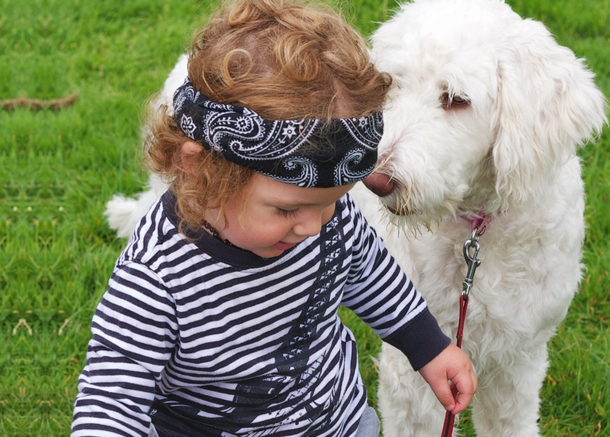Can Having Pets Prevent Asthma?