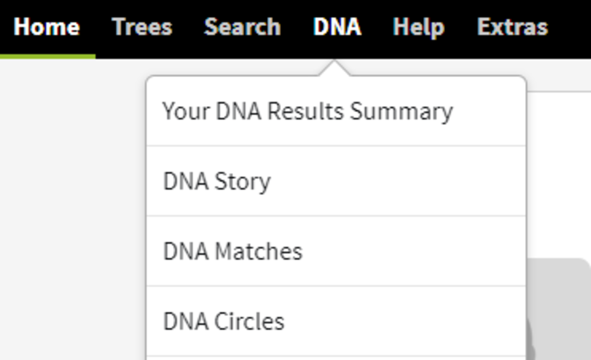 "Click ""DNA"" and then click ""Your DNA Results Summary"""