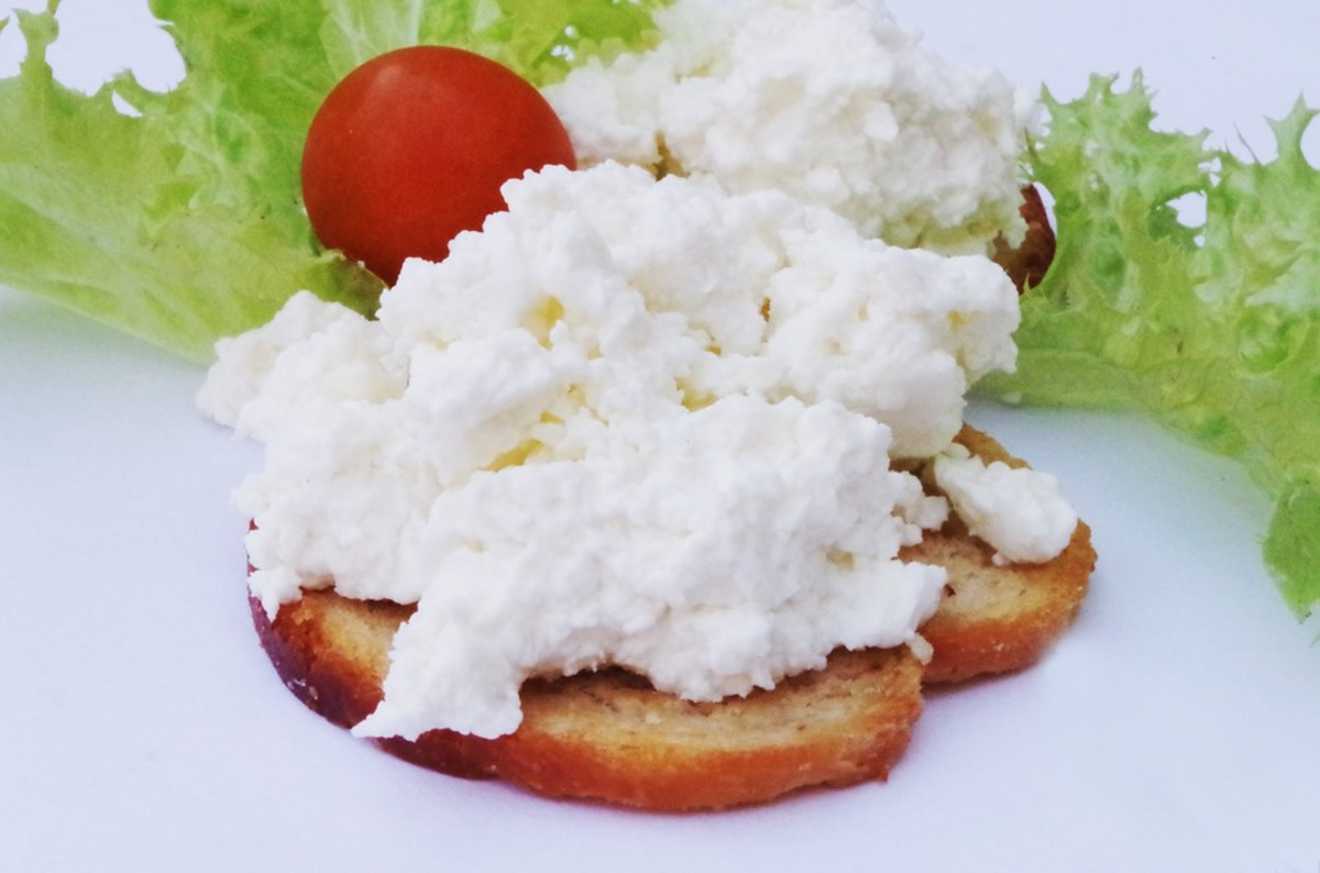 Casein Curds in Stool: Everything You Need to Understand and What You Can Do About It
