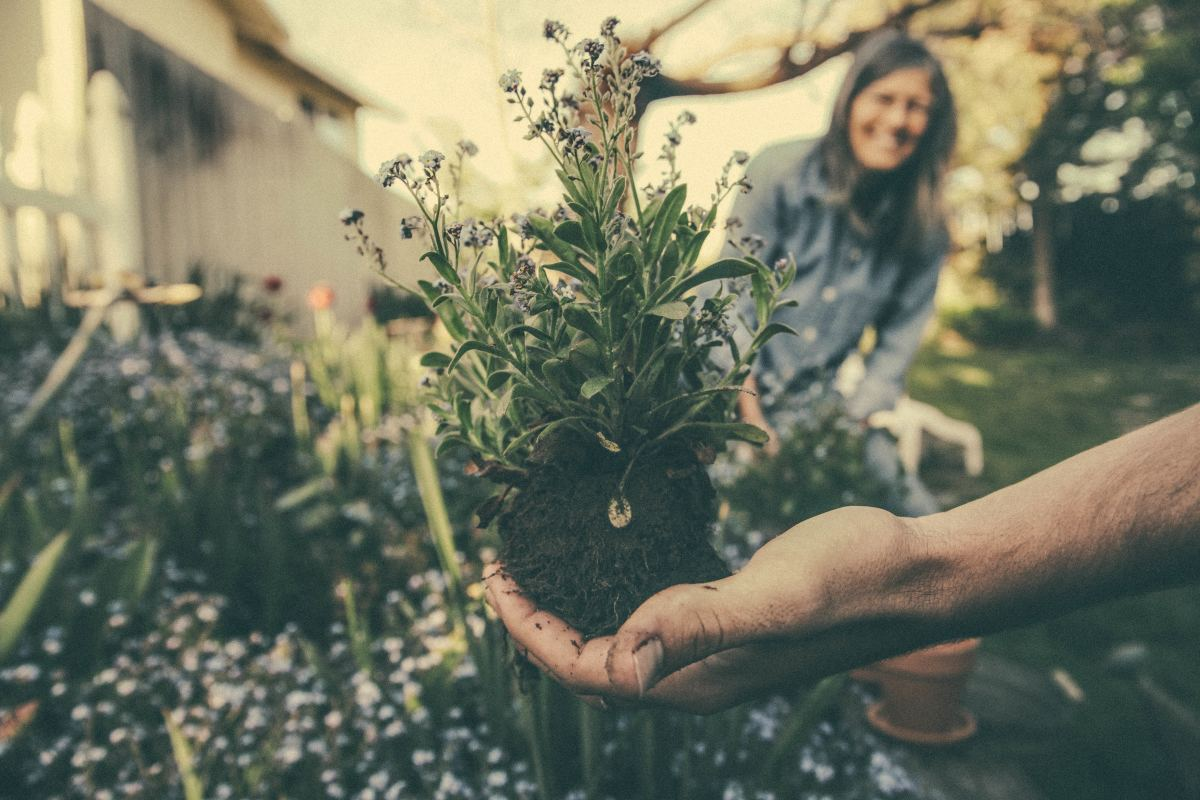 Gardening can help to take your mind off of stressful things.
