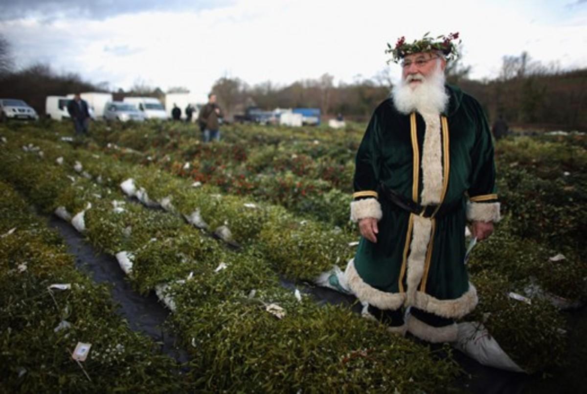 The Tenbury Mistletoe Festival & National Mistletoe Day