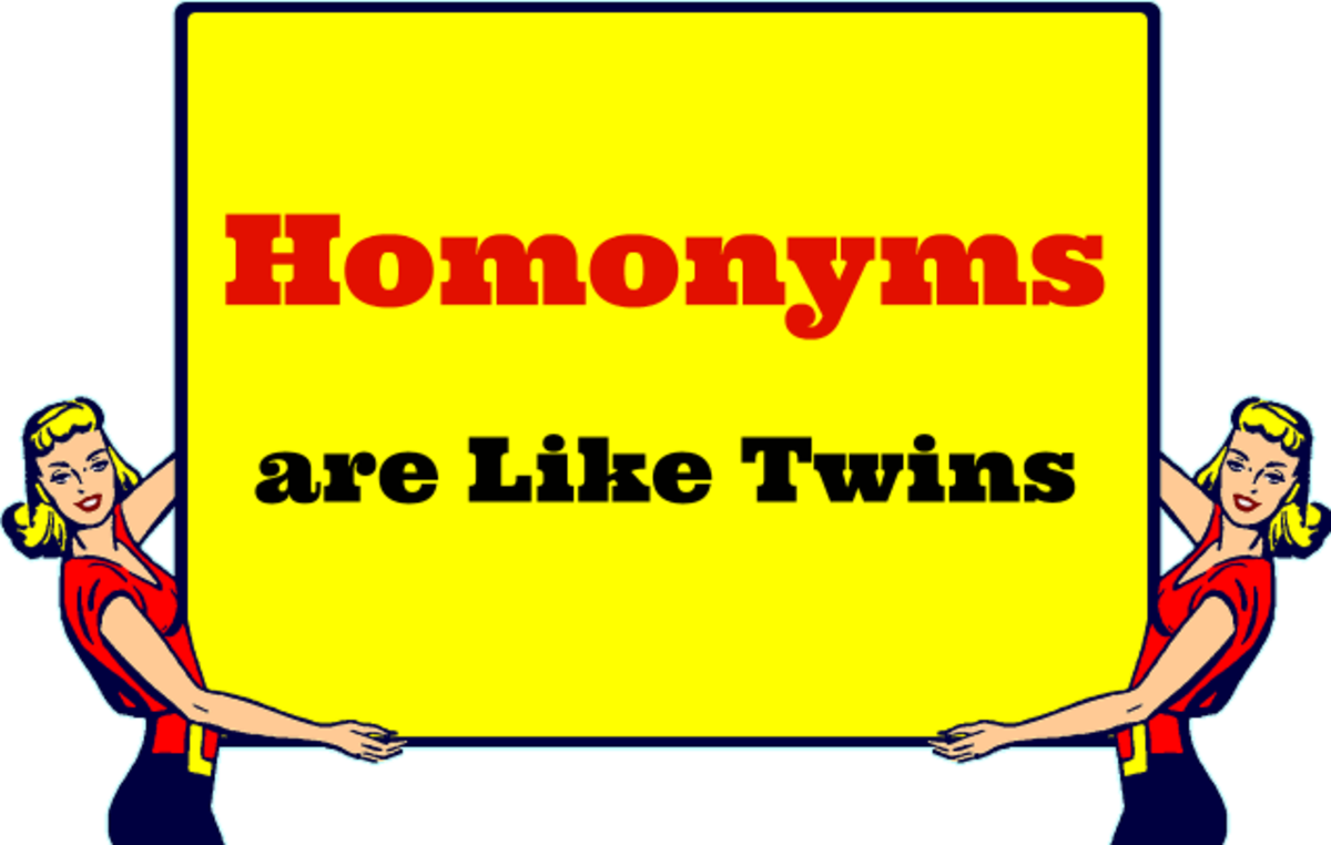 Homonyms are like twins--they may look alike and/or sound alike, but they are not the same. .