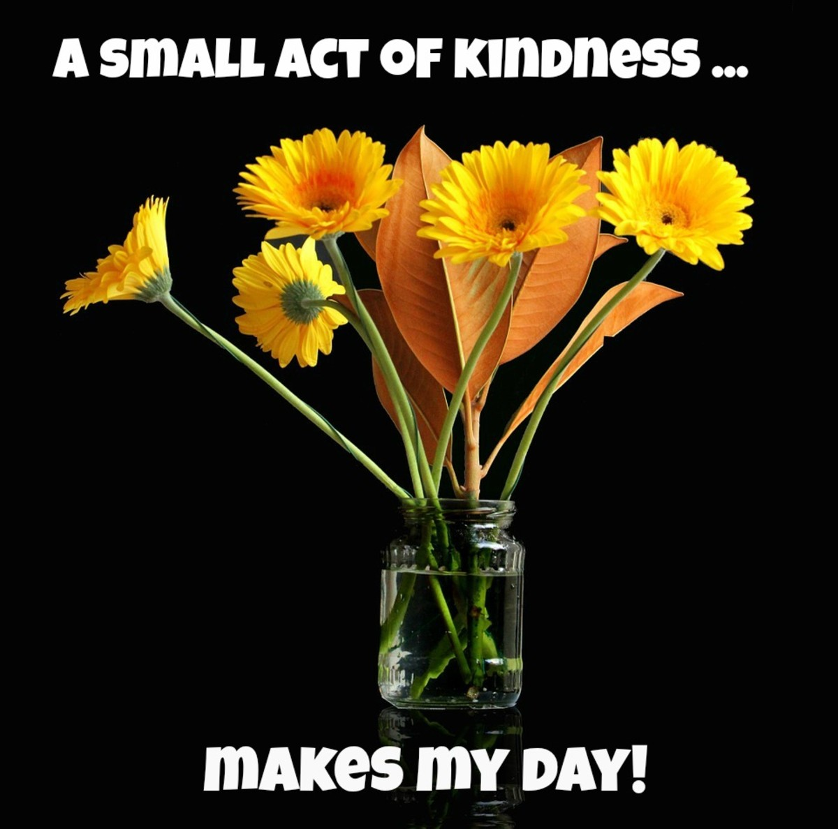 A small act of kindness--like a simple bouquet  of daisies--can make someone's day.
