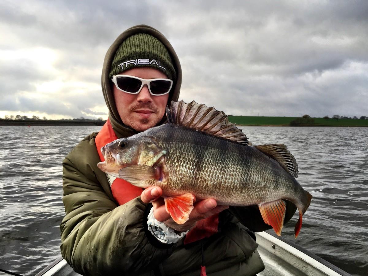 Ultralight Dropshot Perch Fishing