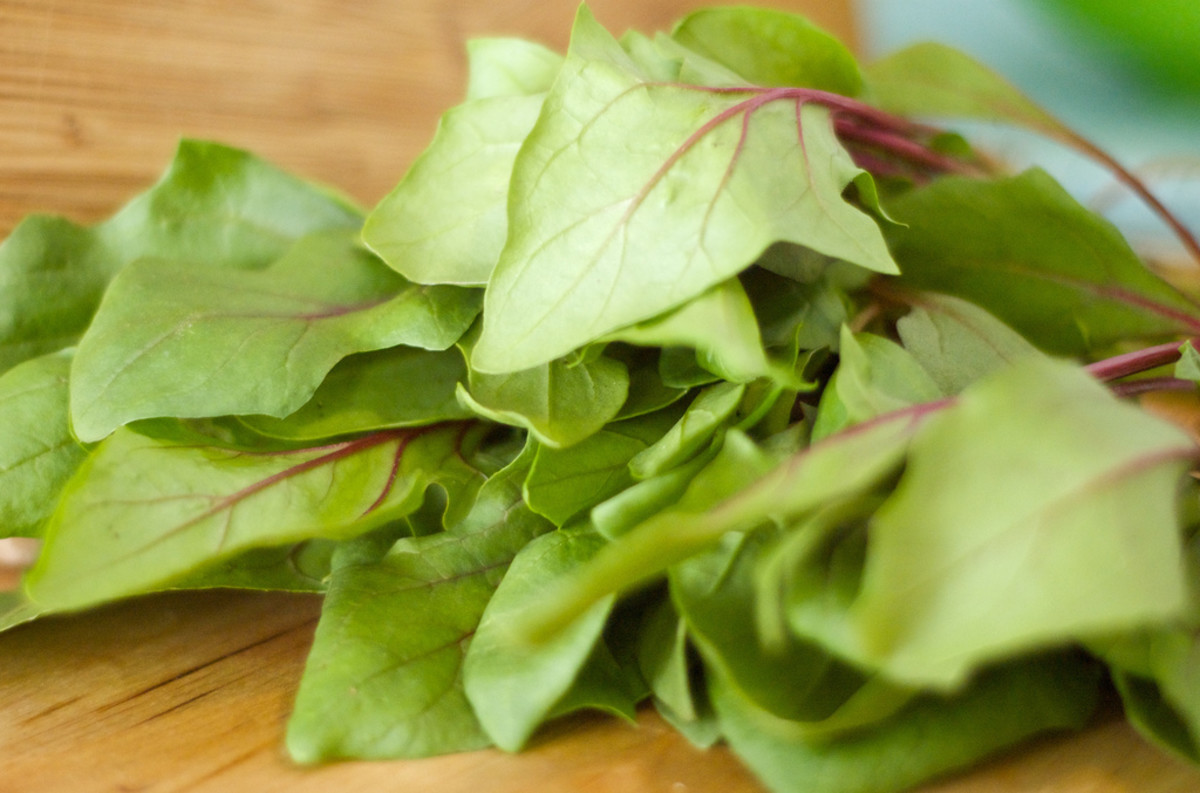 The Health Benefits of Spinach for Endurance Athletes