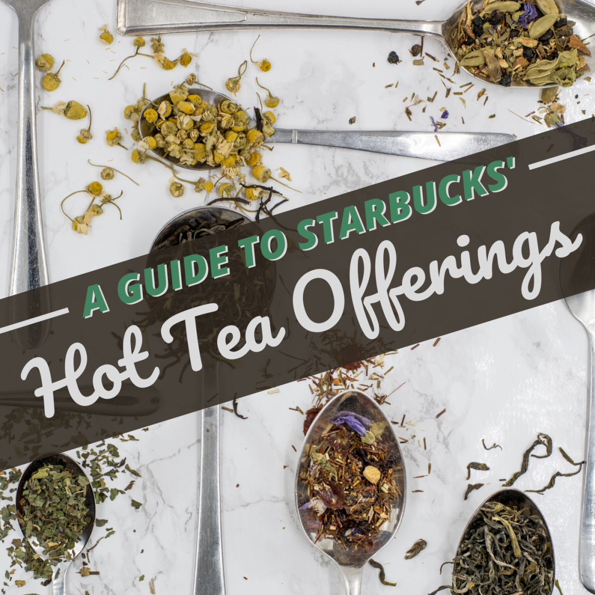 Starbucks Drink Guide: Teavana Hot Teas