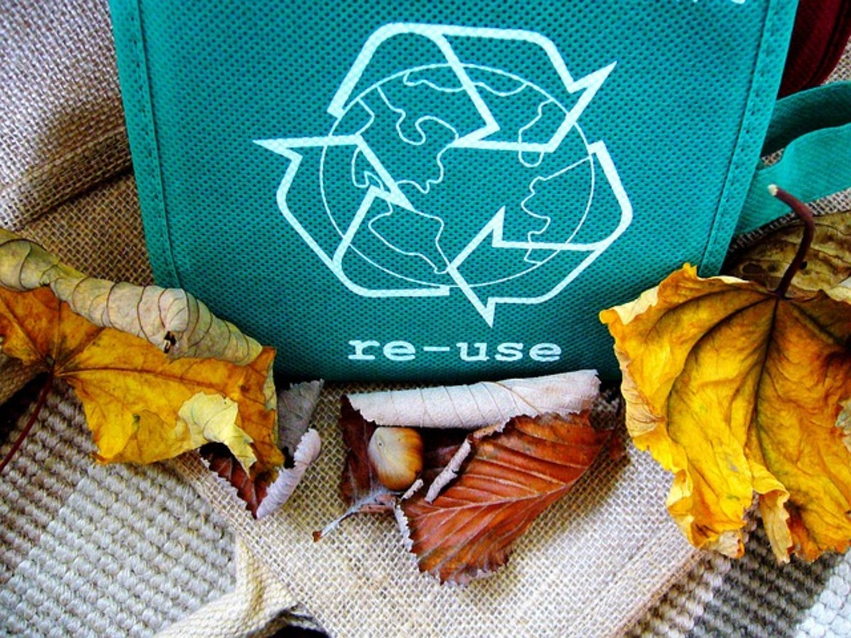 Reasons why you should recycle: Bag with the recycle symbol printed on the side.  When going to the store, you always try to take your own bags, rather than relying on the plastic ones that they give you.