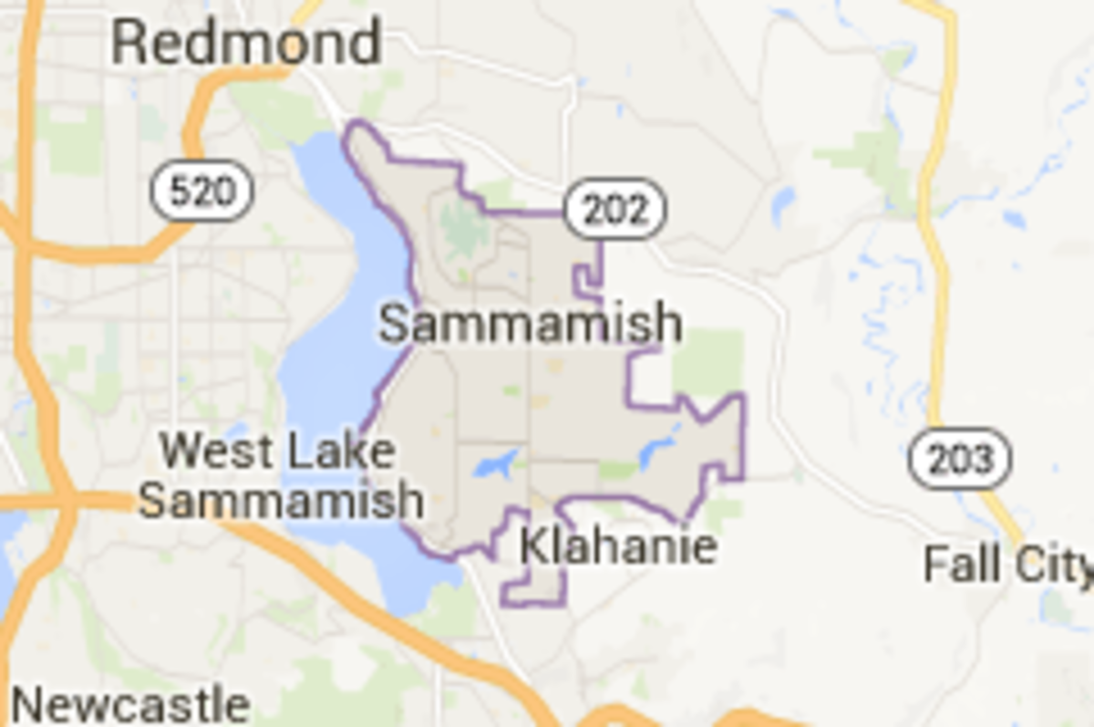Places to Go With Your Dog in Issaquah and Sammamish, Washington