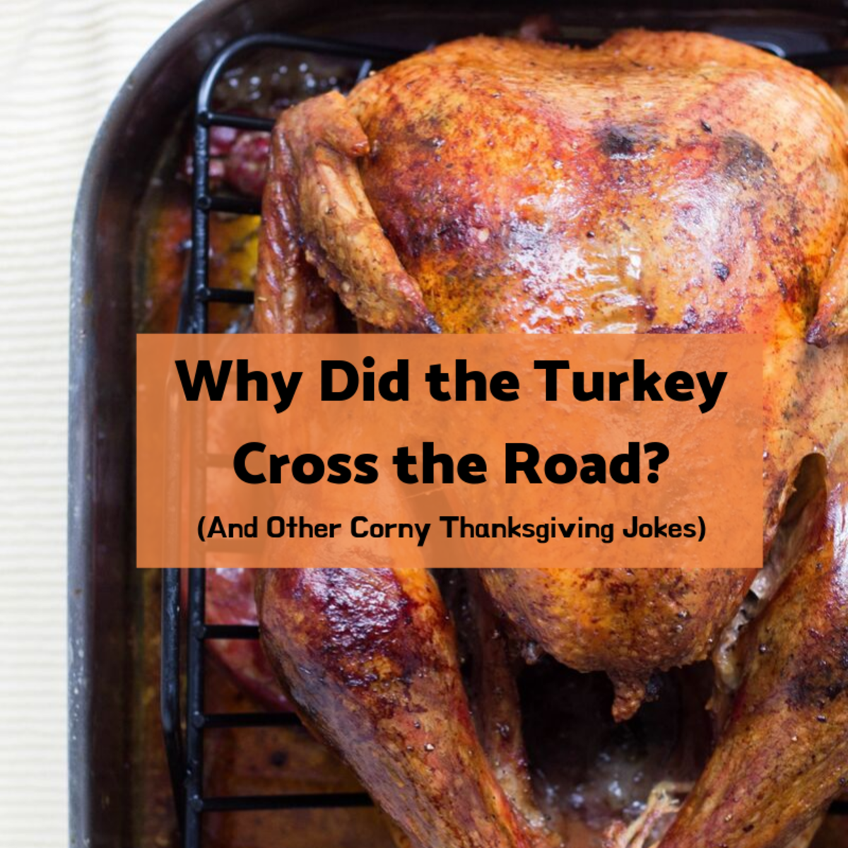 25 Thanksgiving Jokes: Why Did the Turkey Cross the Road?