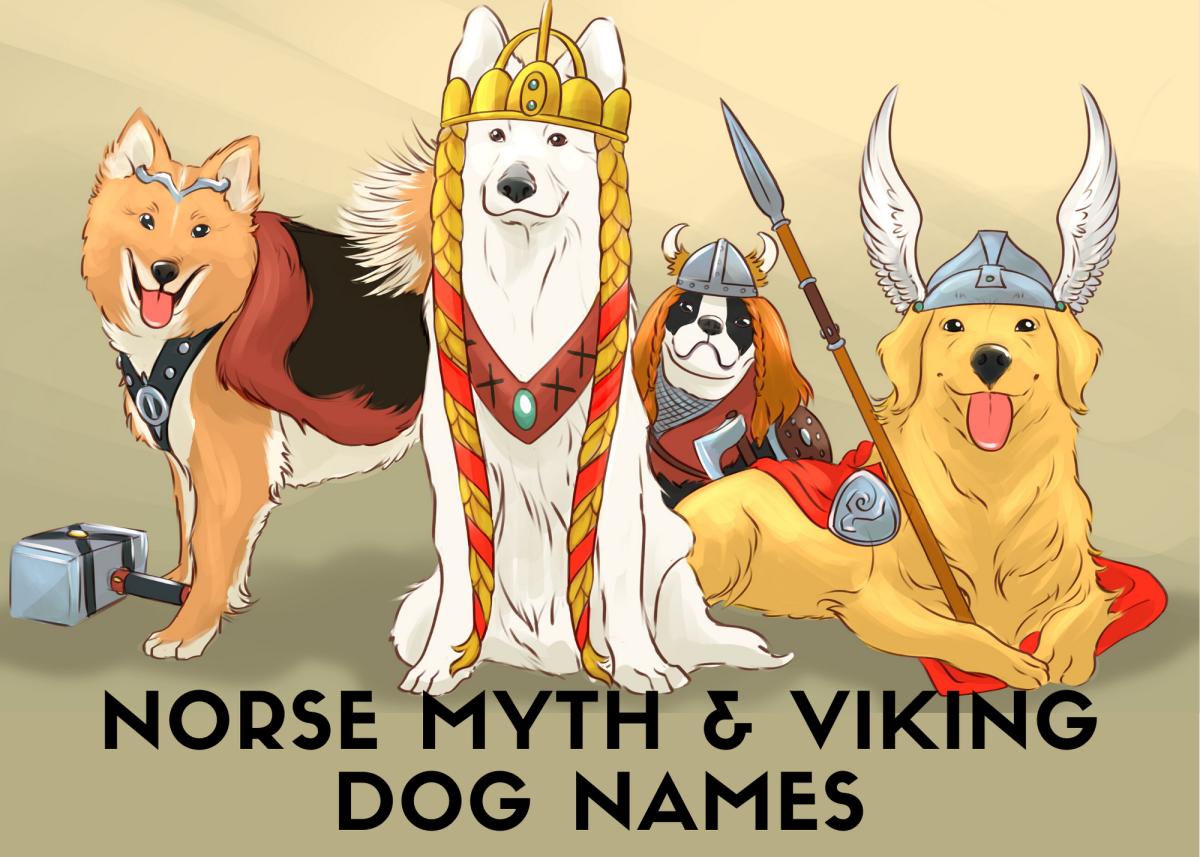 50+ Norse Mythology and Viking Dog Names