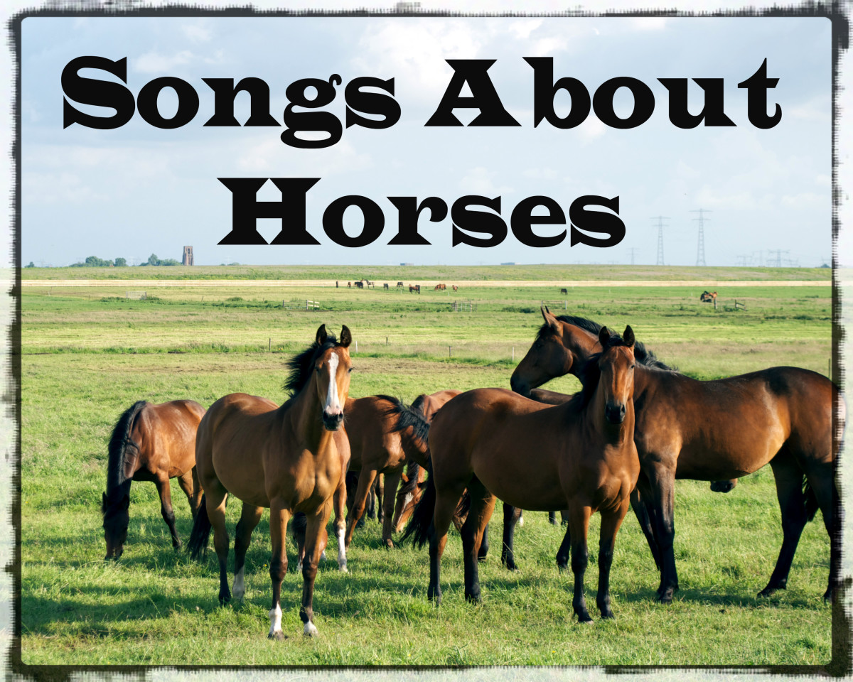 Celebrate your love of horses with a playlist of pop, rock, and country songs about them.