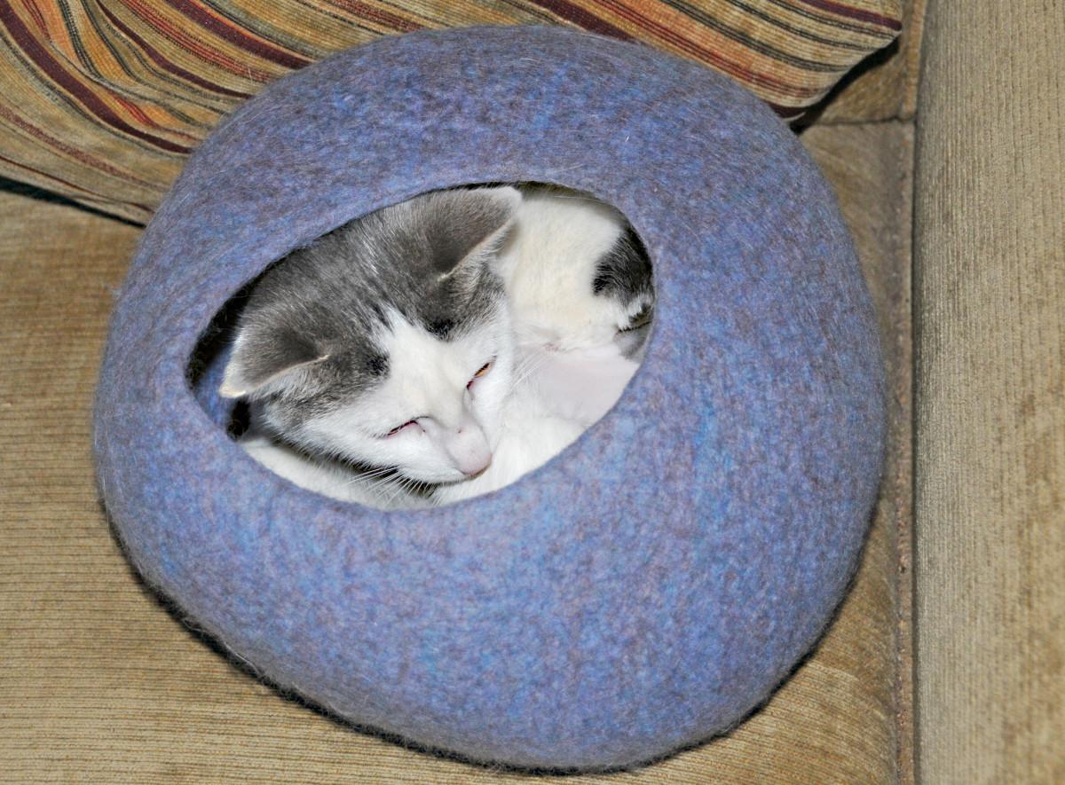 Fun Crochet Rainbow Cat Cave Sack | AllFreeCrochet.com | 755x1024