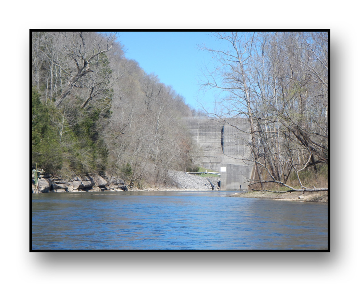 Duck River Kayak Trip:  Normandy Dam to Three Forks