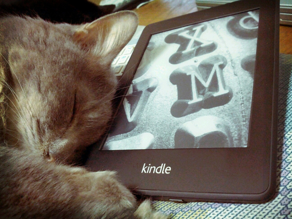 There's nothing like curling up with a kitty and a good book. My Kindle ensures that I have books wherever I go!