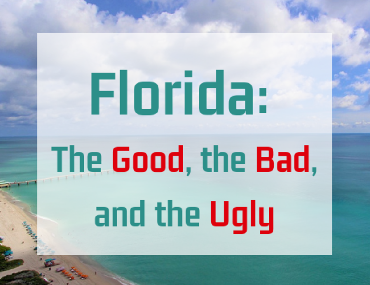 One of the populous states in the US, there are plenty of reasons to move to Florida—and plenty of reasons not to.
