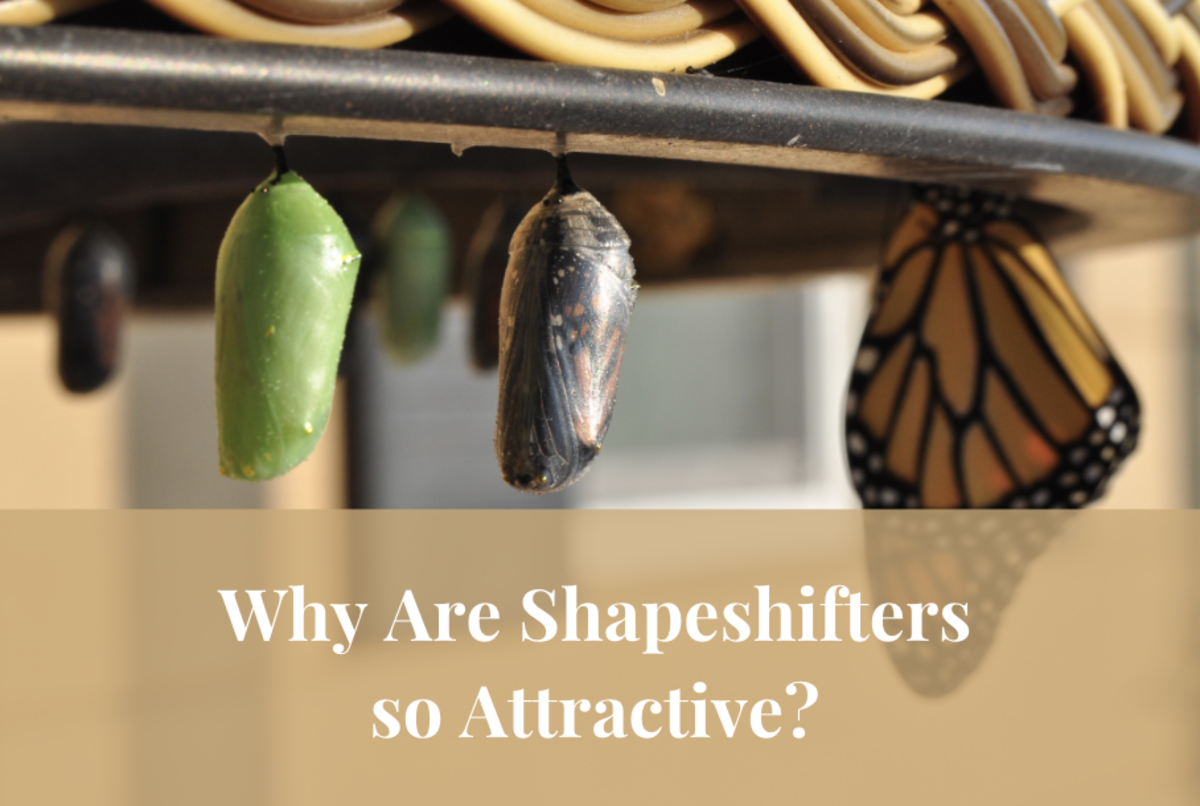 People seem to be going head-over-heels for novels about shapeshifters. Why? This article explores this issue in depth.