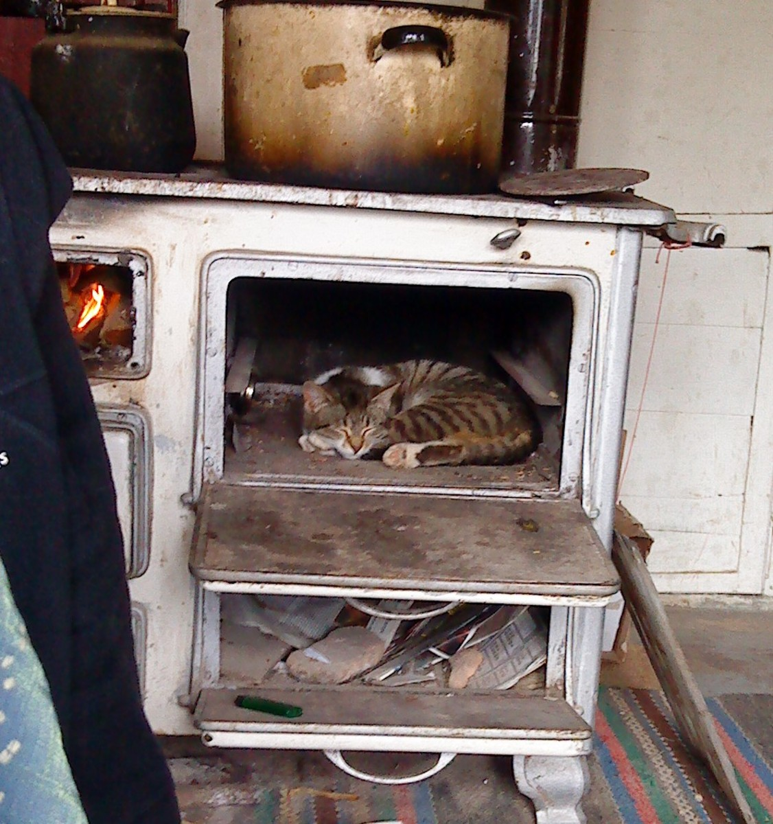 Classic well used petchka with sleeping cat.