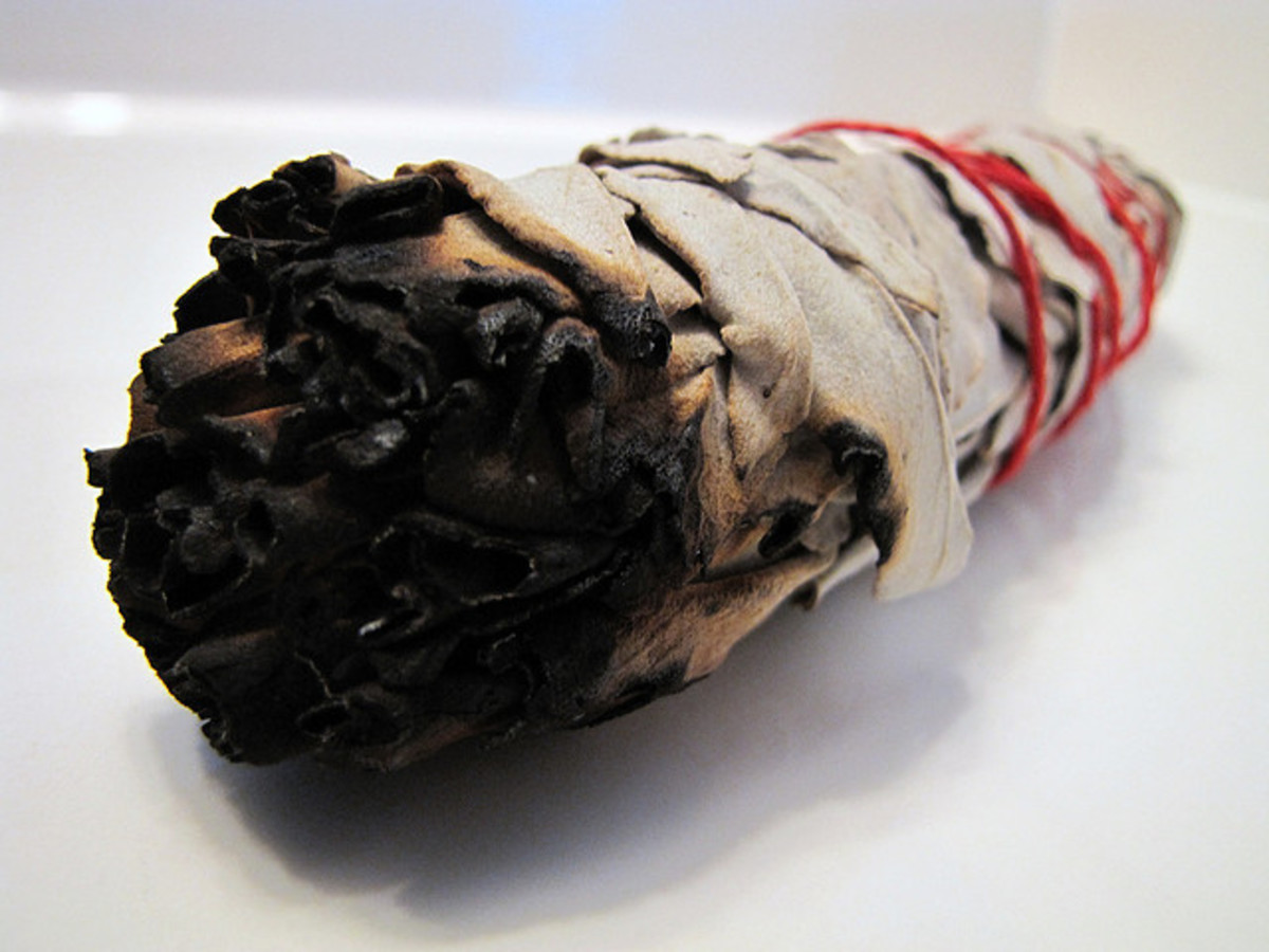 Smudge stick of white sage that has been used to clear positive ions or negative energy.