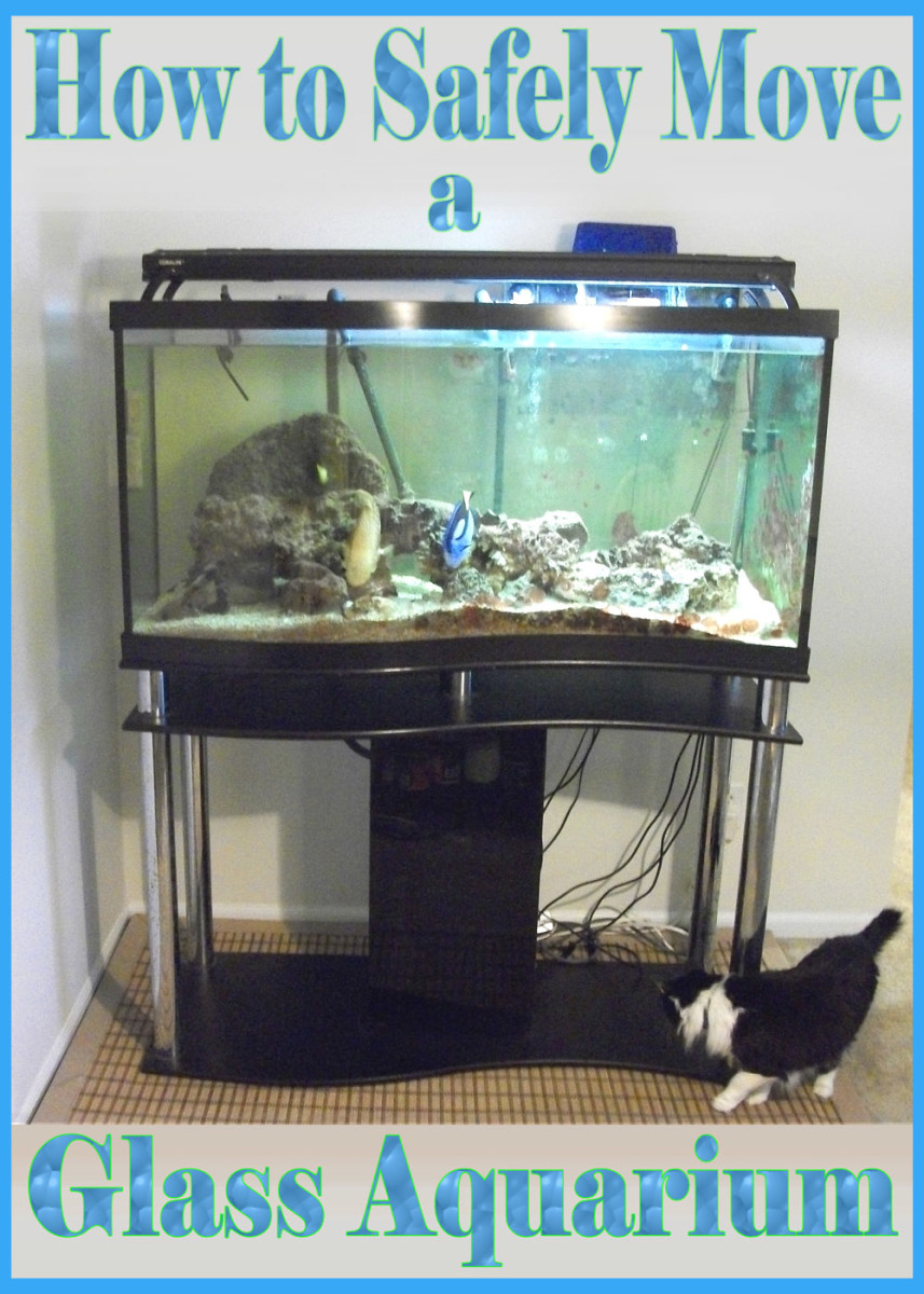 How to Move an Empty Glass Aquarium Over 75 Gallons in Size