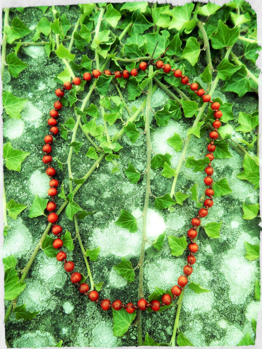 Rowan necklace, used for magical protection.