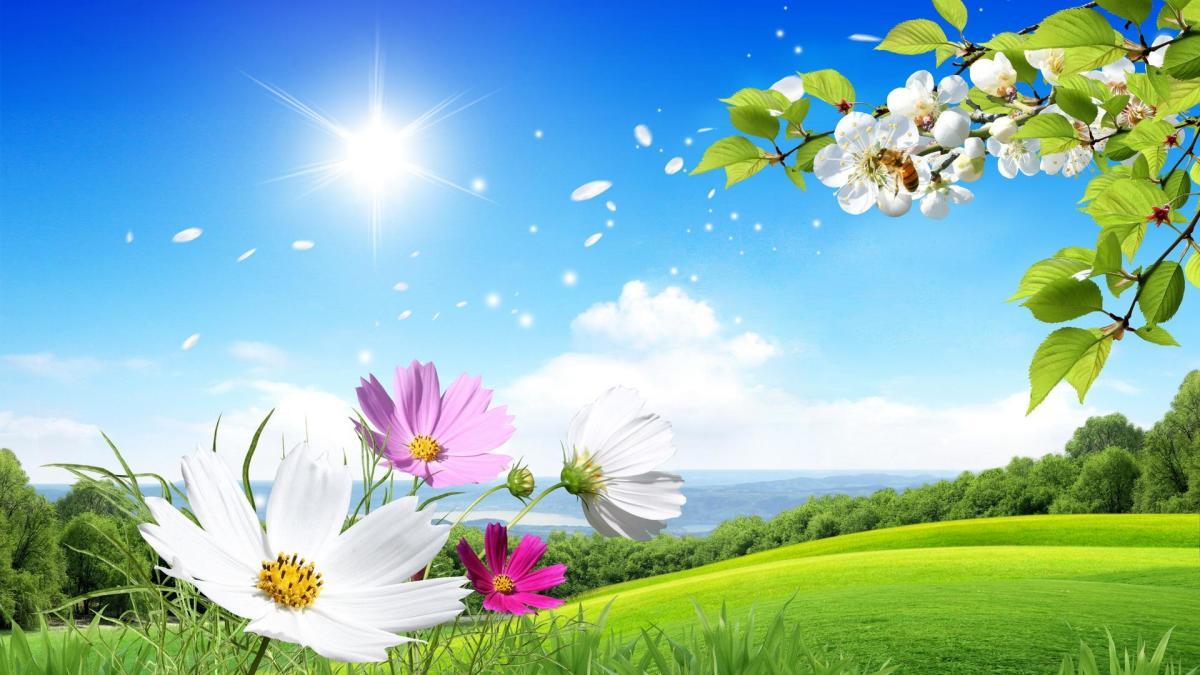 Summer Breeze Haiku
