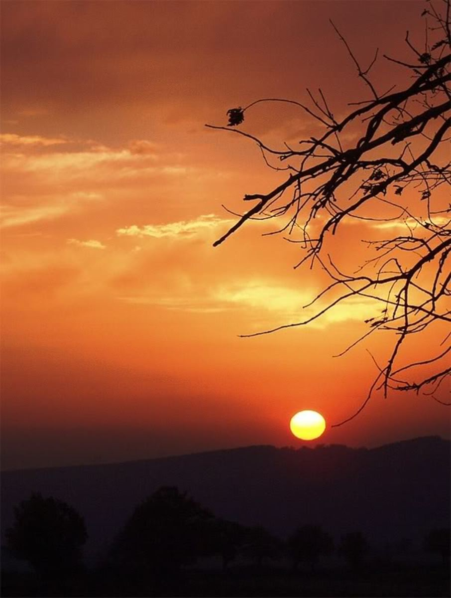 Fire in the Sky: A collection of nature poetry inspired by sunrises and sunsets