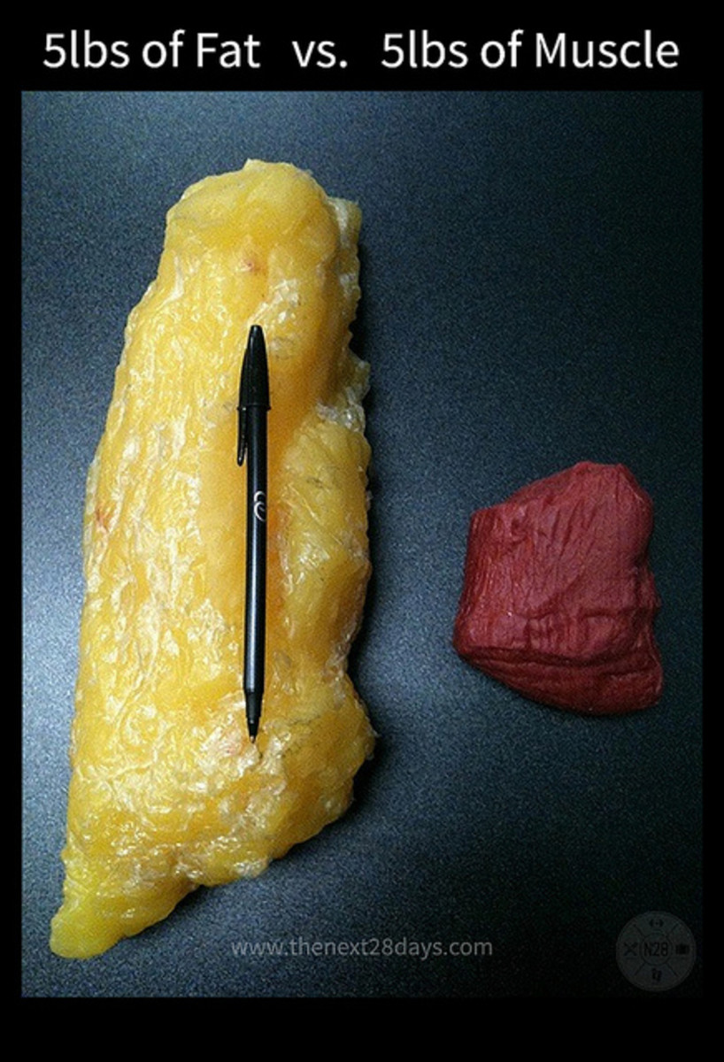 Since muscle is denser than fat, it takes up much less space and burns more kcals per pound!