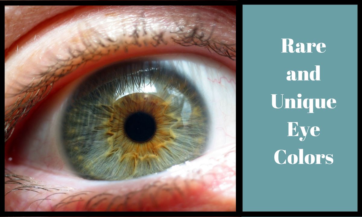 Close up of a hazel eye, which are more rare than you might think.