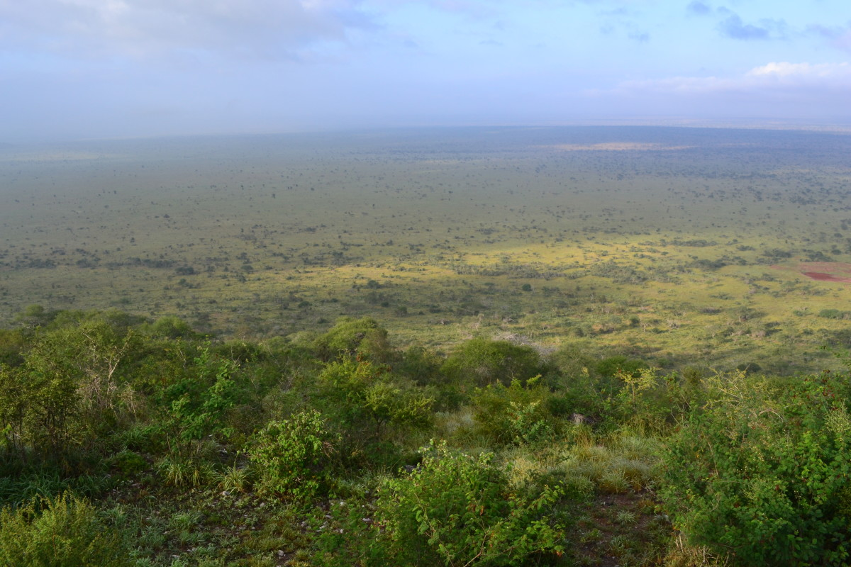 10 Best Places to See Wild Animals and Go on Safari in Kenya (with Photos)