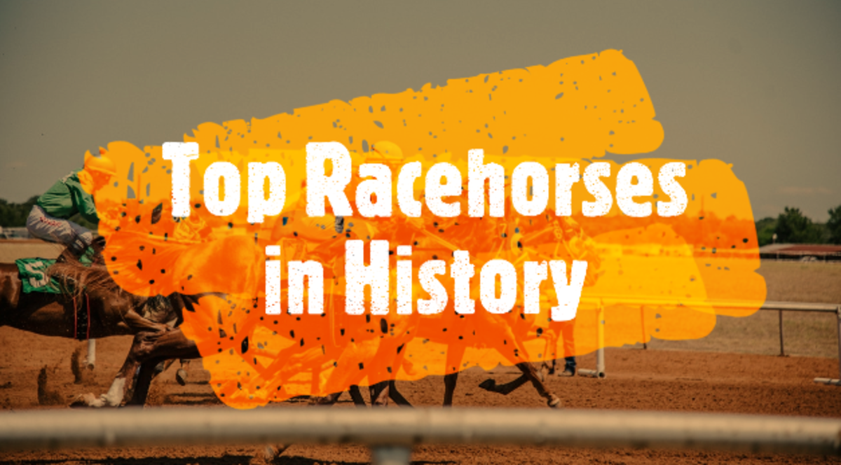 Top 11 Sensational Racehorses in History