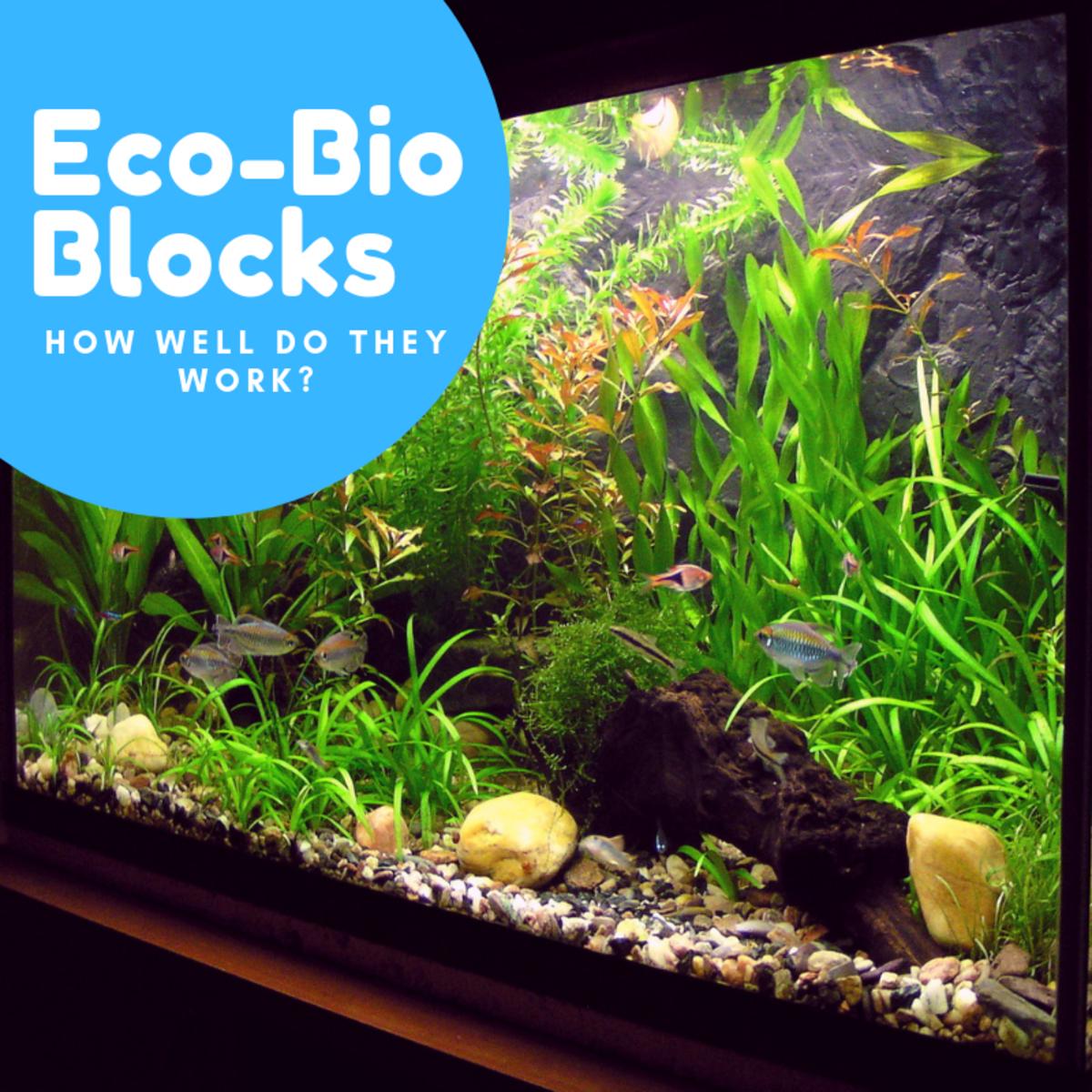How Do Eco-Bio Blocks Improve Aquarium Water Quality?