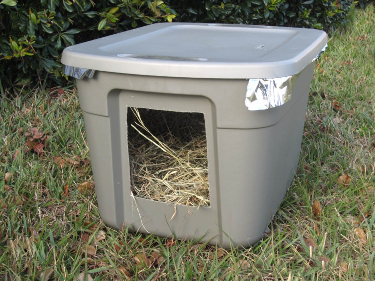 Emergency Cold Weather Shelter for Stray or Feral Cats