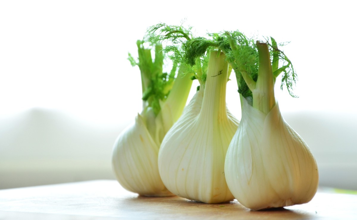 Flavors of the World: Fennel of Italy