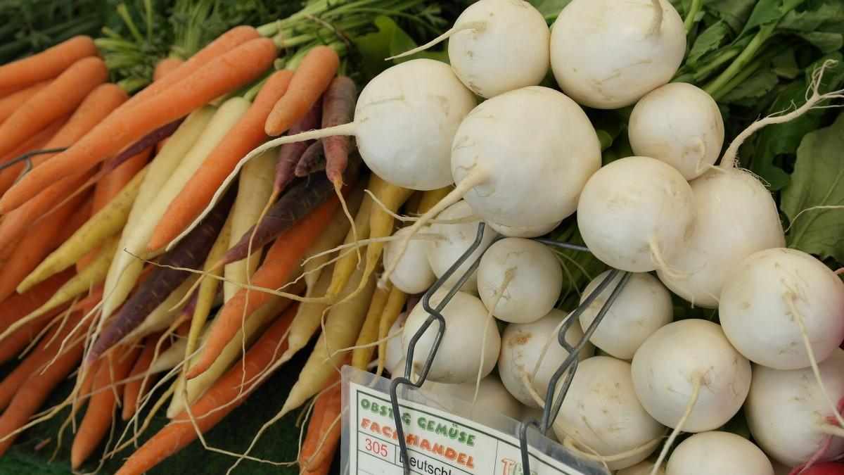 Root Vegetables: Growing, Cooking and Baking Buried Treasures