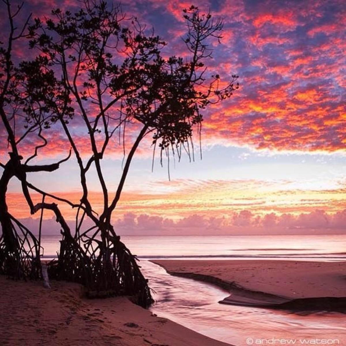 The Farthest Shore (A Poem About a Long Distance Love Affair)