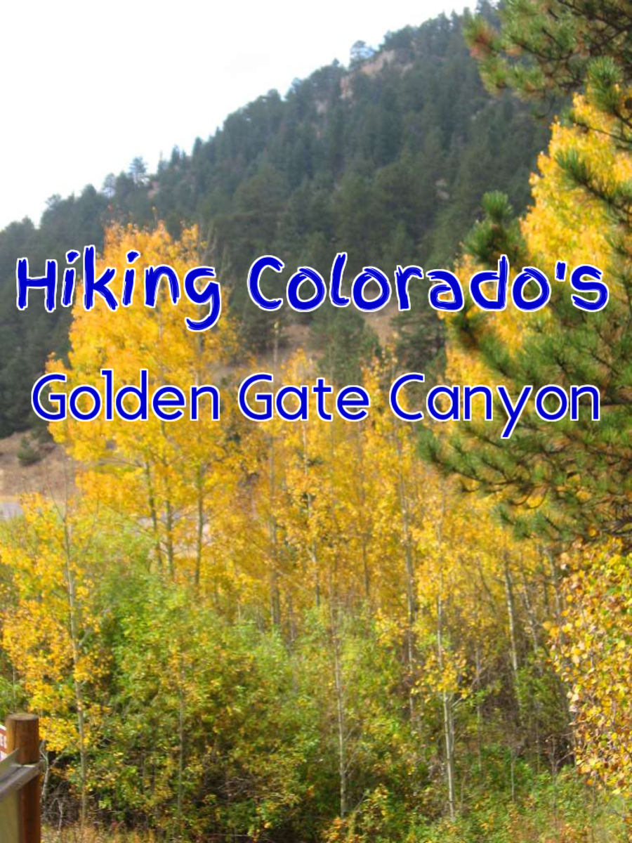 Fall Colors at Golden Gate Canyon State Park: A Hike up Beaver Trail in Colorado's Rocky Mountains to See Aspen Gold