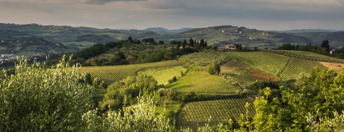 Tuscan landscape.