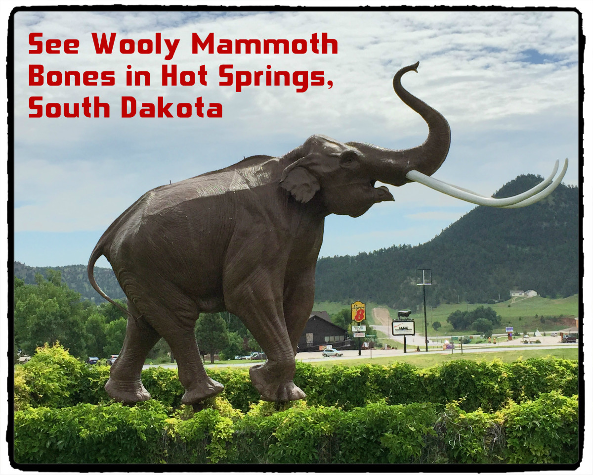Visit the Mammoth Site of Hot Springs, South Dakota:  Walk Among Wooly Mammoth Fossils