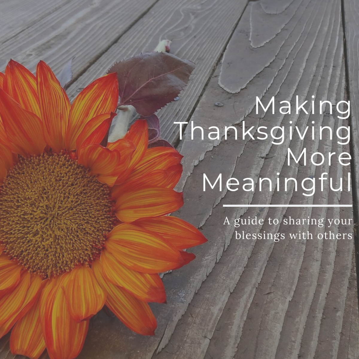 Here are some various activities you can do to help make your Thanksgiving a bit more meaningful.