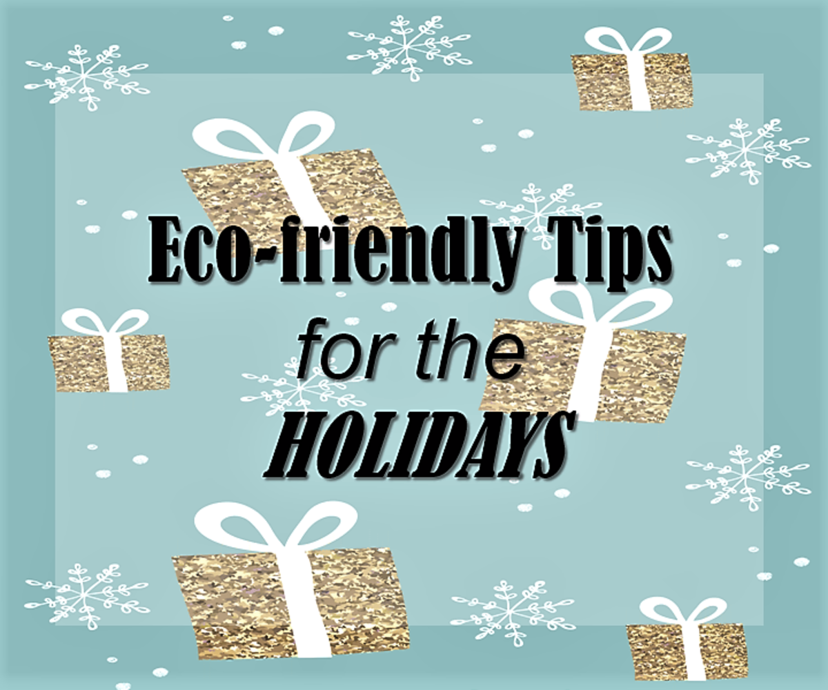 10 Eco-Friendly Tips for the Holidays
